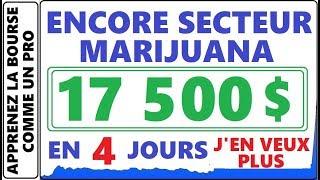 POUVEZ-VOUS VRAIMENT FAIRE 17 500$ DANS LES PENNY STOCK EN 4 JOURS? LE SECTEUR MARIJUANA/CANNABIS