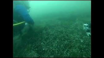 Scuba Diving, Bulgaria, Nessebar & Primorsco, Black Sea - Dmitry Maximov GoPro