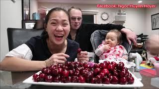 Vlog 426 ll Cherry Nghịch Mùa Ở Mỹ Giá Cũng Gần 600k 1 Kí Như Việt Nam