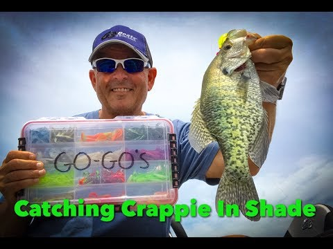 Catching Crappie In The Shade