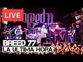 watch he video of Breed 77 - La Ultima Hora Live in [HD] @ Electric Ballroom - London 2012