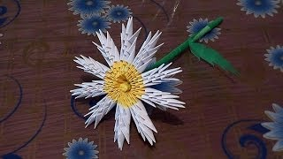 3d Origami Flower Chamomile Tutorial Instruction