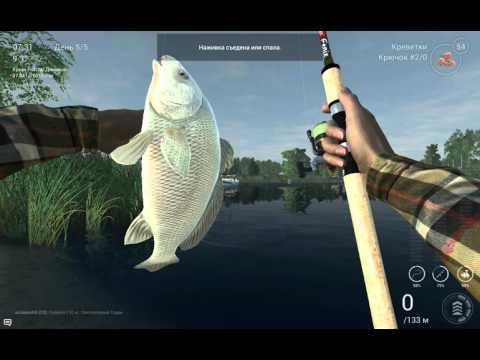 как ловить горбыль в fishing planet