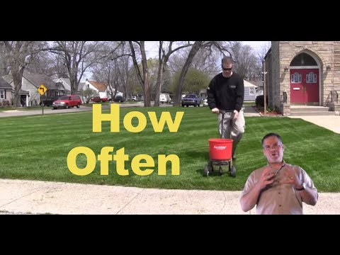 How Often Should I Fertilize The Lawn Quick Tips You