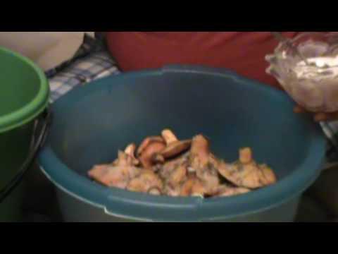 Как чистить рыжики грибы