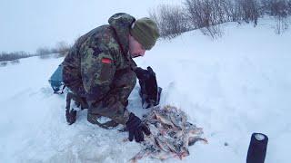 Тягаем рыбу одну за одной Рыбалка на севере в глухозимье