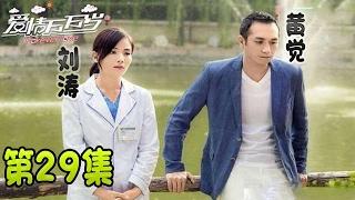 爱情万万岁 forever love 29【浙江卫视版】(刘涛、张凯丽、韩童生、黄觉主演)