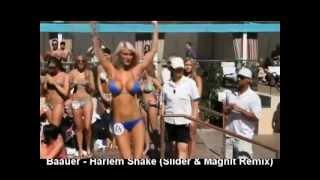Baauer - Harlem Shake (Slider & Magnit Remix)