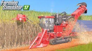 Trzcina cukrowa - Farming Simulator 17 [PLATINUM] | #39