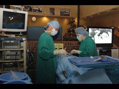 Perioperative Cognitive Diseases Management - Dr. Zdravka Zafirova
