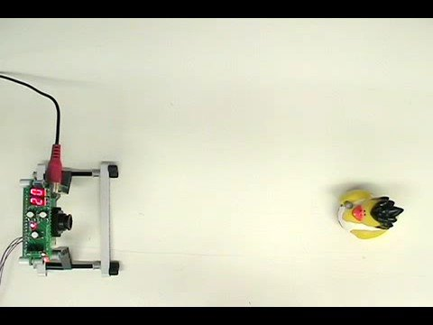 RoboSight - Neural Network Camera