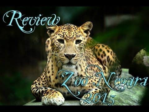 Review: Zoo Negara