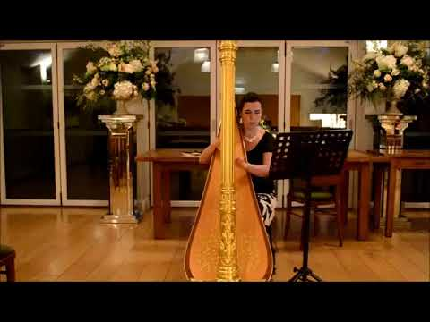 A Thousand Years by Welsh Harpist W14
