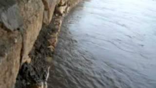 Flood Rohri Sukkur Sindh Pakistan 2010 (6)