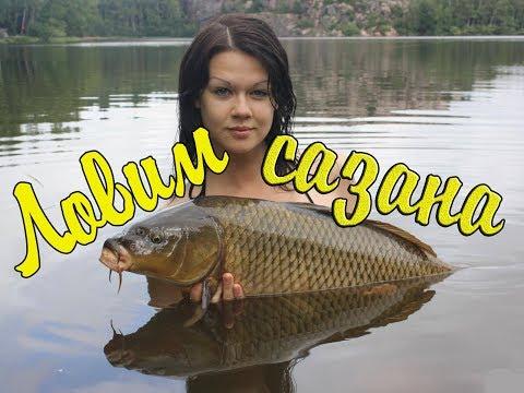 Как поймать Сазана?! Рыбалка на реке Чулым 2017 кукуруза Bonduelle рулит