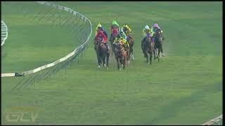 Vidéo de la course PMU PRIX RISING SUN DURBAN DASH