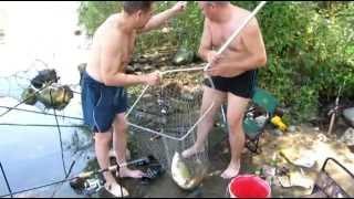 Рыбалка:Южный Буг, Ладыжин, зачетный белый амур