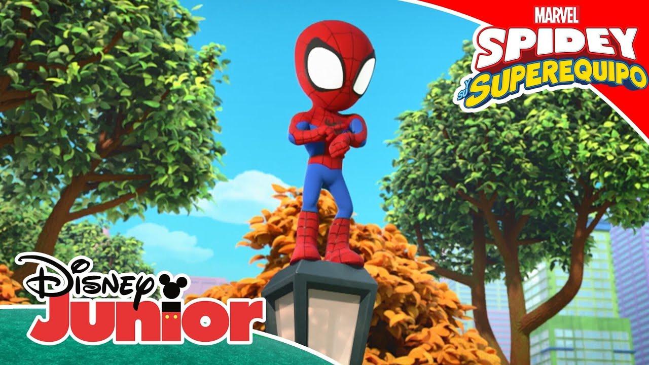 Conoce a Spidey y su superequipo: Haciendo el mono | Disney Junior Oficial