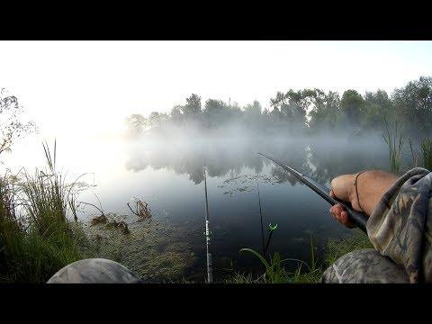 Видео рыбалка на плотву и карася в августе