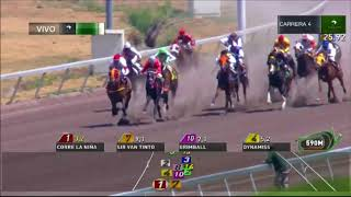 Vidéo de la course PMU QUIRINA H.