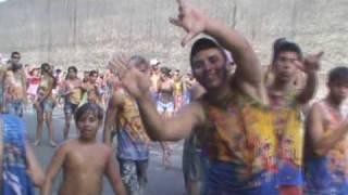 Galo da Serra - Micarana 2010