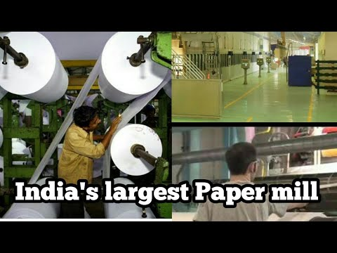 Asia Pulp Paper Indonesia