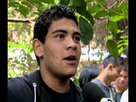 Alunos lutam para preservar mata nativa vizinha ao colégio São Francisco