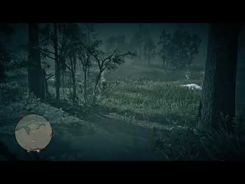 woman ghost in swamps - duch ženy v bažinách - Red Dead Redemption 2