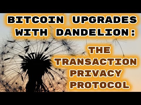 Bitcoin Upgrades To Dandelion: The Transaction Privacy Protocol