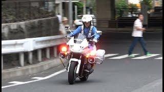 白バイの凄い加速と躍動感!!交通機動隊が信号無視の違反車を猛追跡!!急いでいても会釈を忘れない神対応!!Japanese Motorcycle police