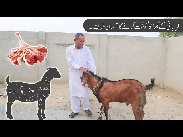 How To Butcher A Whole Lamb | قربانی کے بکرے کا گوشت کرنے کا طريقہ | Bakra Eid Special | Mubashir