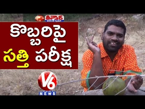 Bithiri Sathi Research On Coconut | Funny Conversation With Savitri | Teenmaar News | V6 News