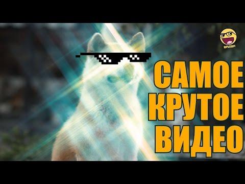 Популярные новости о школе 27 / Собрание / - Смотреть видео онлайн