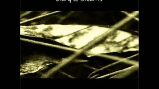 Diary of Dreams - The Stranger Remains