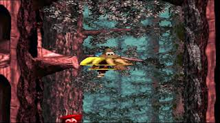 Donkey Kong Country 3: But Your Chains - #2