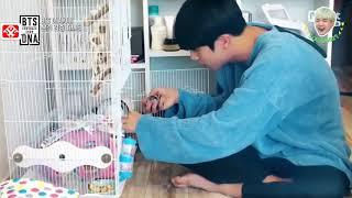 [VIETSUB] BTS COMEBACK SHOW - BTS