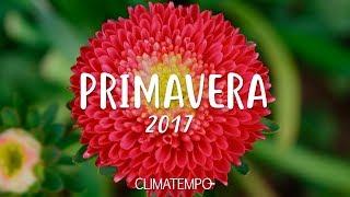 Coletiva - Hangout Primavera 2017