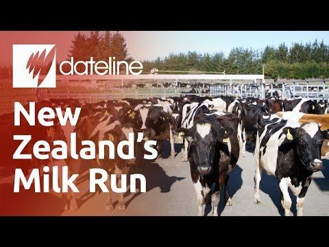 New Zealand's Milk Run