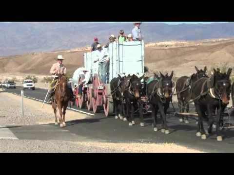 Death valley 20 mule team borax youtube for 20 mule team borax swimming pools