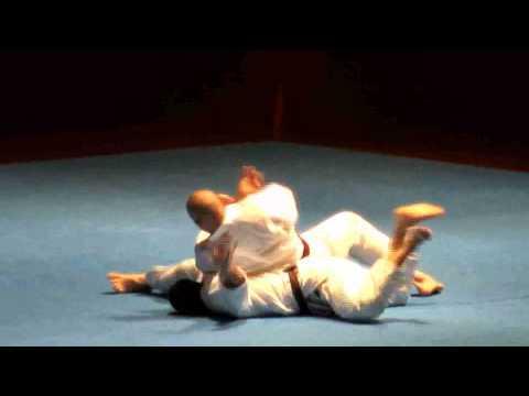 The Power of Goju-Ryu Karate