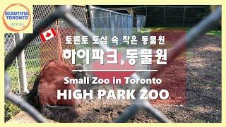High Park Zoo l Canada l 4K (도…
