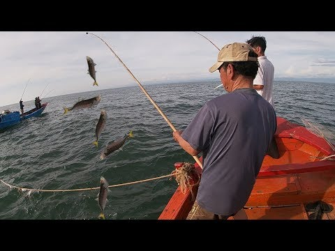 One Day Fishing In The Ocean - Fisherman's Life