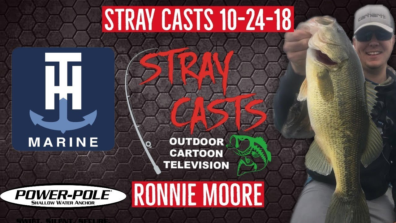 Stray Casts November 7, 2018 featuring Dave Mercer
