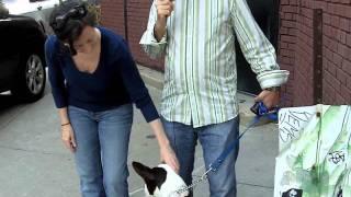 Dog Training Queens Ny - Testimonial - Virginia & Jim