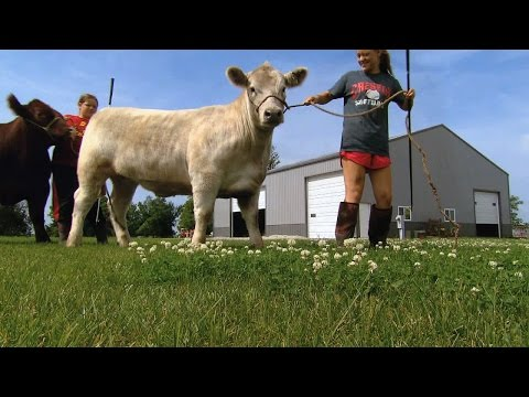 4H Family Roots | Iowa State Fair 2015