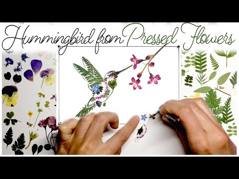 Art from pressed flowers 'Hummingbird with A Flower'. Handmade Gift idea with natural objects.