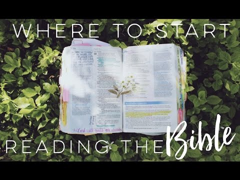 Which Book of the Bible Should You Read Next/First???