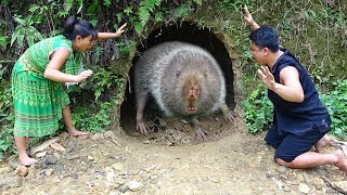 Survival Skills - Finding Meet Forest Mouse Live Deep Hole Underground - Cooking Forest Mouse Recipe