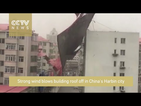 Tanner and Drew - Huge Gust Of Wind Sends Man Flying Onto Roof