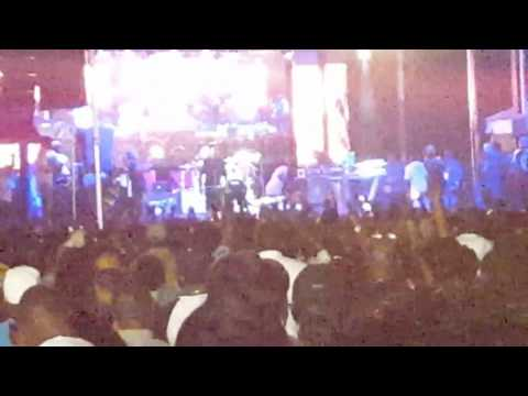 Shaggy performing at the 2016 Jerk Festival in Markham Park  Florida